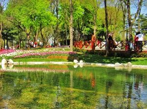 emirgan-grove-istanbul-tulip-garden