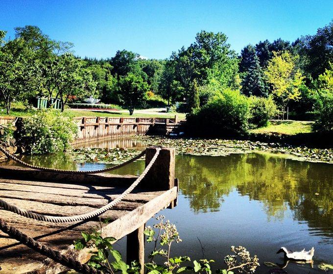 bahcekoy-Arboretum