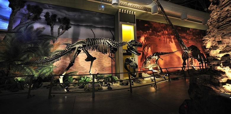 İstanbul Forum Jurassic Land