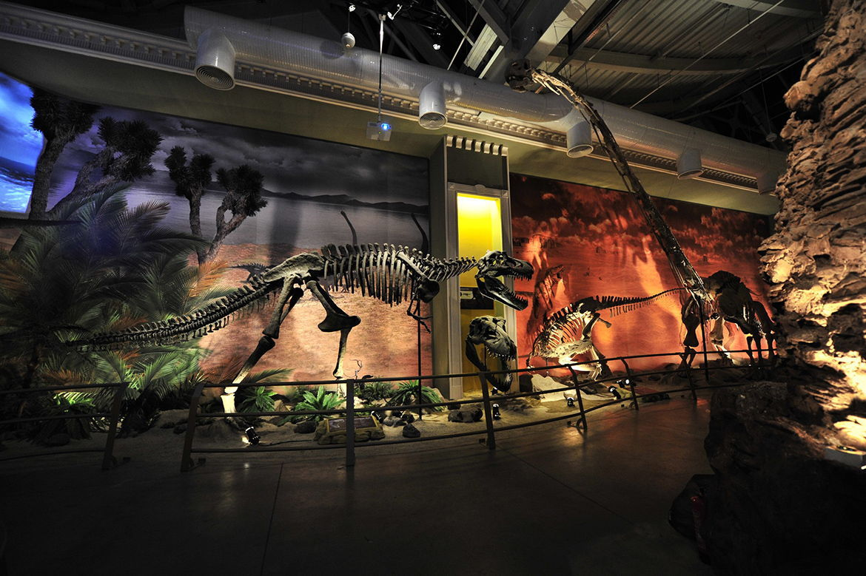 jurassic-land-dinozor