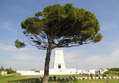 Gallipoli Tour: Day Trip from Istanbul