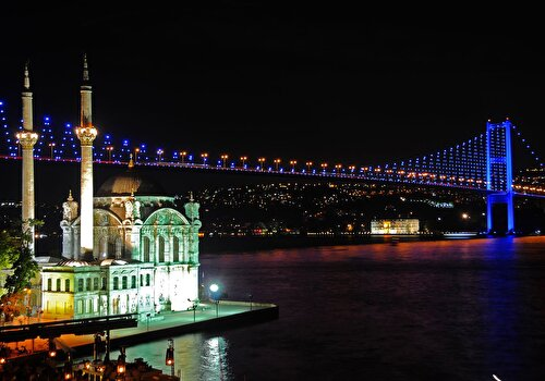 Bosphorus Night Cruise by a Private Boat & Fish & Chips