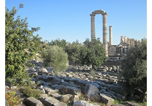 Ephesus, Pamukkale & Priene 3 Days Tour with Flight
